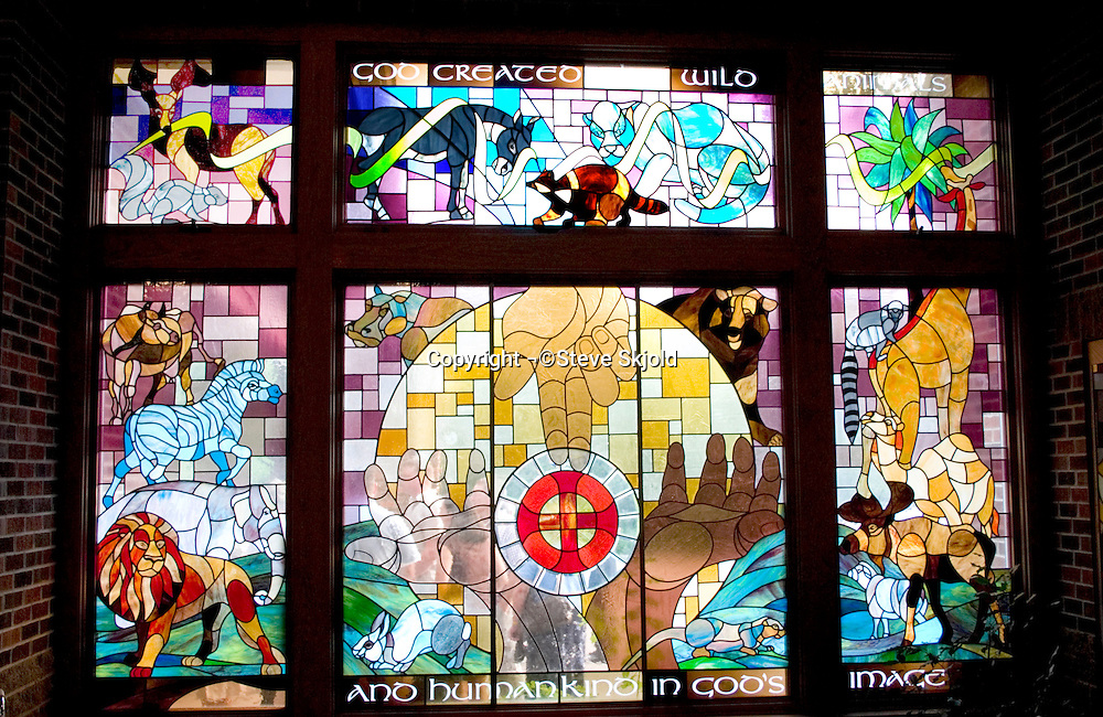 Church stain glass window creation of man and animals. First Lutheran Church Fergus Falls Minnesota USA