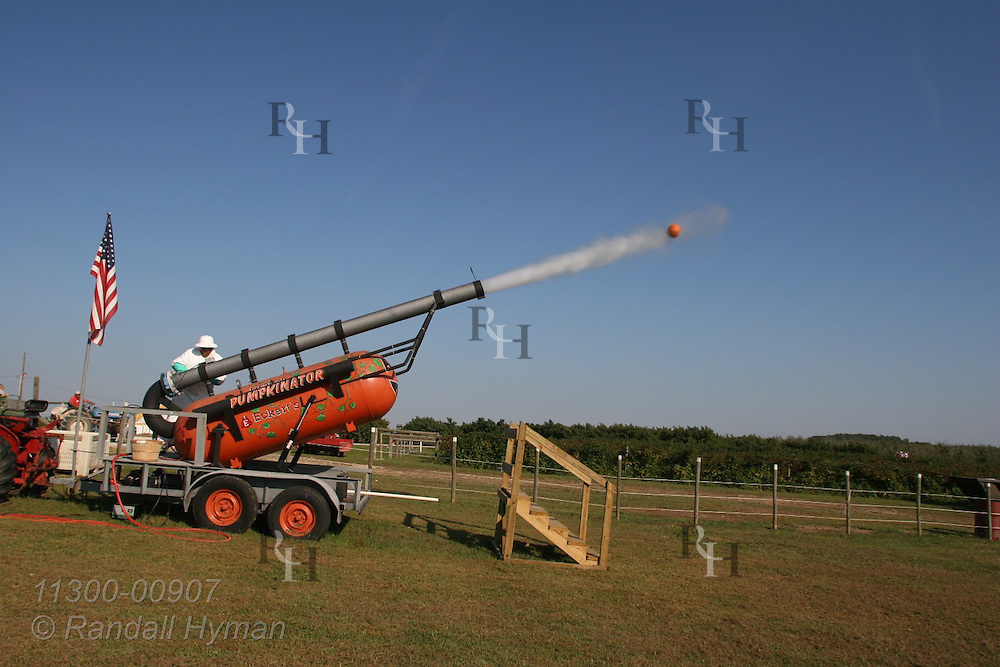 Vapor spews from Punkinator cannon trailing behind pumpkin just fired half a mile into the woods at Eckert Grafton farm; Grafton, Illinois.
