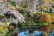 Cholmondeley Castle Gardens - April