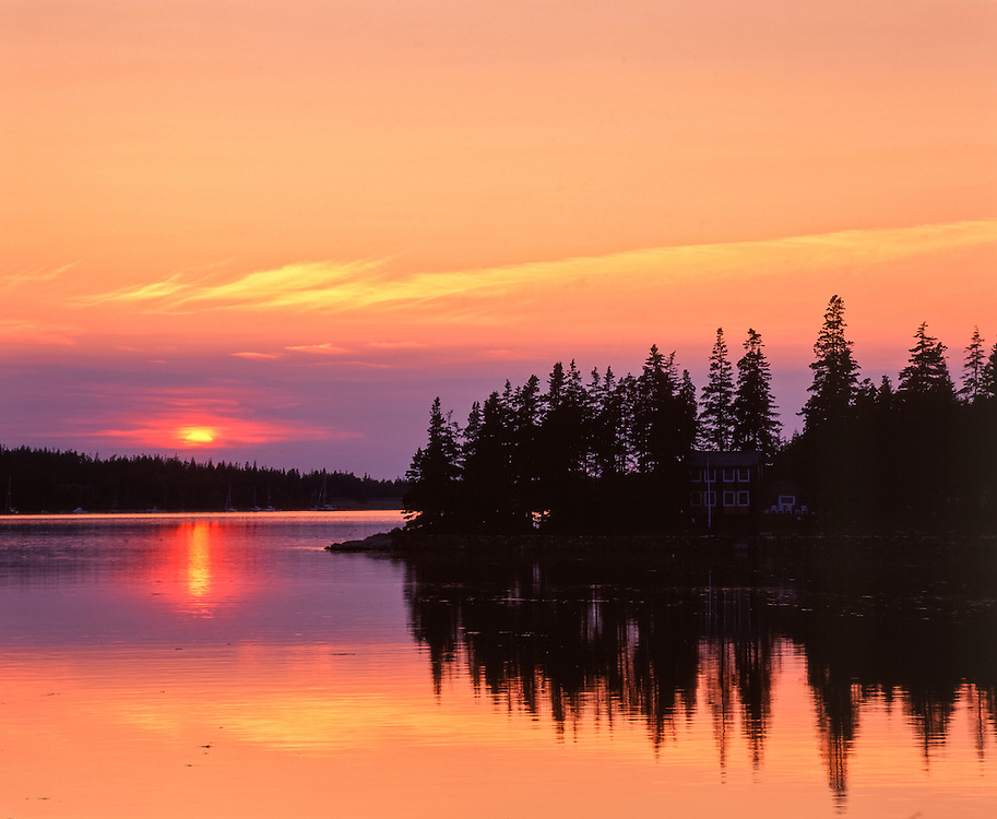 Sunset across Mosquito Harbor, with spruce tree silhouettes & reflections, Winter Harbor, ME