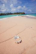 Yawini Beach, Yasawa Island,