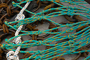 Commercial fishing dredging equipment, chains and rope. Cape May, New Jersey