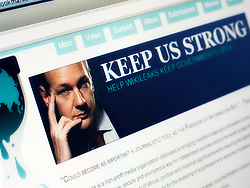 Man reading Wikileaks website