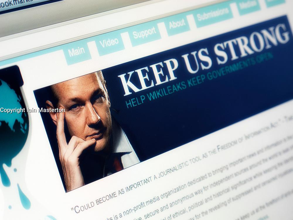 Man reading Wikileaks website