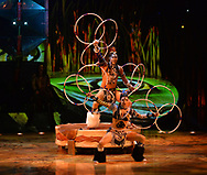 Cirque du Soleil's production TOTEM on January 11th <br />Royal Albert Hall London