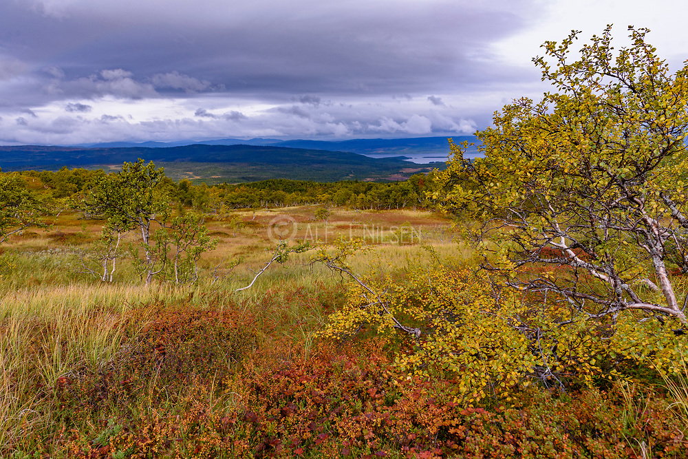 Lierne National Park in Tröndelag, Norway, is situated not far from the border to Sweden.