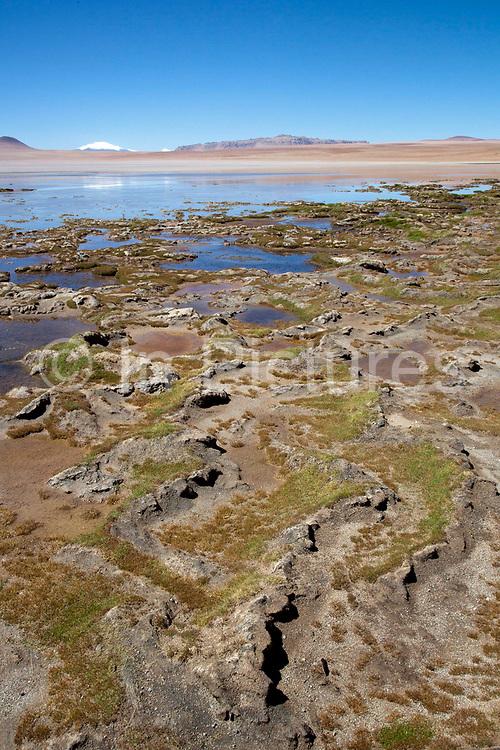 Snow capped volcanoes and moss deposits. Salar Uyuni salt flats and Eduardo Avaroa national park, south western Bolivia