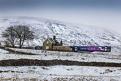 © Licensed to London News Pictures. 28/01/2020. Ribblehead UK. A commuter train arrives at Ribblehead station this morning in the shadow of snow covered Pen-Y-Ghent mountain in the Yorkshire Dales. Photo credit: Andrew McCaren/LNP