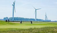 BRIELLE -  Hole 8 . Kleiburg , golfbaan.  COPYRIGHT KOEN SUYK
