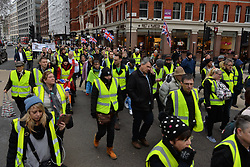 © Licensed to London News Pictures. 12/01/2019. London, UK. Pro-Brexit supporters wearing yellow vests demonstrate in central London ahead of Theresa May's Brexit deal on Tuesday, 15 January. Photo credit: Ray Tang/LNP