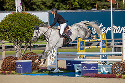Janssens Toon, BEL, Orelando van't Kiezelhof<br /> Belgian Championship 6 years old horses<br /> SenTower Park - Opglabbeek 2020<br /> © Hippo Foto - Dirk Caremans<br />  13/09/2020