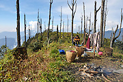 Outdoor camping India, Sikkim landscape