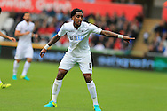 Leroy Fer of Swansea city looks on. Premier league match, Swansea city v Hull city at the Liberty Stadium in Swansea, South Wales on Saturday 20th August 2016.<br /> pic by Andrew Orchard, Andrew Orchard sports photography.