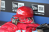 2014 MLB Reds at Dodgers