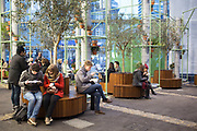 New under cover seating area in Borough Market decorated with olive trees, allowing visitors a place to come to sit and eat their lunches. London, UK.