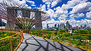 The Marina Bays Sands Hotel and Singapore Flyer from the OCBC Skyway at Gardens by the Bay, Singapore, Republic of Singapore