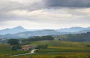 Vineyards near Seguret, appellation cotes du Rhone villages seguret. Vaucluse, France, Europe