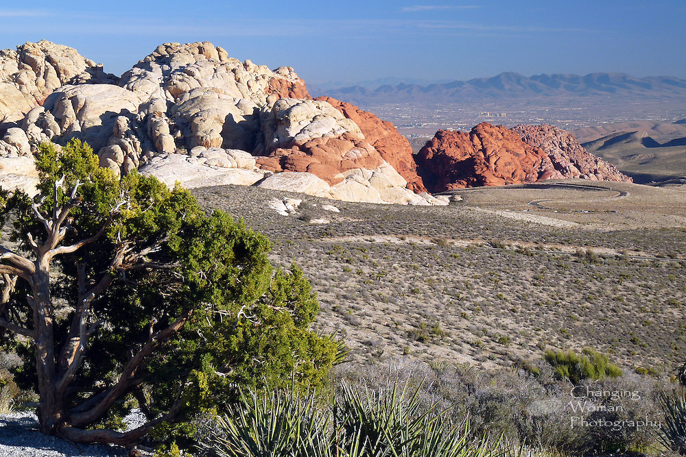 """Southern neighborhoods of Las Vegas sprawl across the distant background of this horizontal image of the white, red, and pink sandstone hills that are distinctive features of Red Rock Canyon National Conservation Area just west of """"Sin City."""""""
