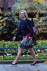London, November 22 2017. Chief Secretary to the Treasury Elizabeth Truss attends the UK cabinet meeting at Downing Street. © Paul Davey