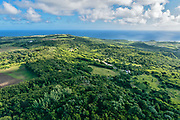 View north from Indian Ground/Prospect, St. Peter, Barbados