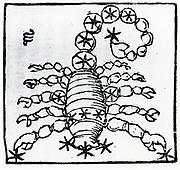 Zodiac sign of Scorpio.  From 'Sphaera mundi', Strasburg, 1539