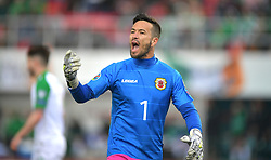 Gibraltar's Kyle Goldwin during the UEFA Euro 2020 Qualifying, Group D match at the Victoria Stadium, Gibraltar.