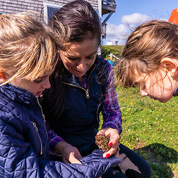 A woman shows a sea urchin to her two daughters in Lubec, Maine.