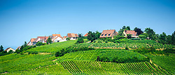 The village of Zellenberg, Alsace, France - surrounded by vineyards.<br /> <br /> (c) Andrew Wilson | Edinburgh Elite media