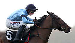Posh Trish and Harry Cobden clear the last flight before going on to win The Ladbrokes Mares' Novices' Hurdle Race run during Ladbrokes Trophy Day at Newbury Racecourse.