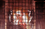 St Paul in Prison' (detail).  Raphael (1483-1520) Italian artist.