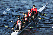 Crew: 10   Lincoln Rowing Centre   LCN-MOLINARIO   4x- Band 2<br /> <br /> Head of the Trent 2018<br /> Division 3<br /> <br /> To purchase this photo, or to see pricing information for Prints and Downloads, click the blue 'Add to Cart' button at the top-right of the page.