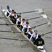 Mixed Novice 8+