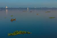 fishermen fishing on the Taungthaman Lake Amarapura  Mandalay state Myanmar (Burma)