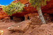 Photographs of the landscape and at Canyonlands National Park, Island In The Sky