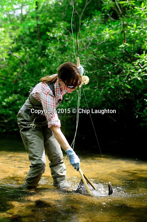 Woman fly fishing North carolina stock photo image
