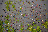 Aerial view of people fishing in group in a traditional fishing culture along the swamp, Chatmohar, Rajshahi province, Bangladesh.