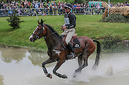 JETSET IV ridden by Andrew Nicholson (New Zealand) placed third after the cross country Bramham International Horse Trials 2016 at  at Bramham Park, Bramham, United Kingdom on 11 June 2016. Photo by Mark P Doherty.