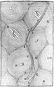 Rene Descartes' universe showing matter filling it collected in vortices with star at centre of each, often with orbiting planets. Path of comet shown by wavy line starting at N. From Descartes 'Epistolae', Amsterdam, 1668
