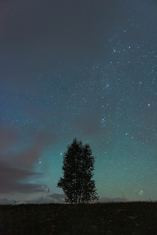 Three birch trees and starry night sky soon to disappear in rolling cloud formations, Vidzeme, Latvia Ⓒ Davis Ulands   davisulands.com