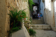 Potted plants along wall, steps and paved streets of old Korcula town, children and mother relaxing in background. Korcula old town, island of Korcula, Croatia