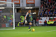 Michel Vorm the Swansea City goalkeeper kicks from his goal.<br /> Barclays Premier League match, Cardiff city v Swansea city at the Cardiff city stadium in Cardiff, South Wales on Sunday 3rd Nov 2013. pic by Phil Rees, Andrew Orchard sports photography,