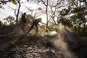 Deux employés d'African Parks versent de l'eau salée dans une saline de la réserve de Chinko, en République centrafricaine. Grâce à ce procédé, les biologistes du parc espèrent attirer les animaux, et les garder ainsi dans le coeur protégé de la réserve.