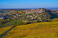 France, Centre-Val de Loire, Cher (18), le Berry, Sancerre et son vignoble en automne, vue aérienne // France, Cher 18, Berry, Sancerre village, vineyard in autumn, aerial view