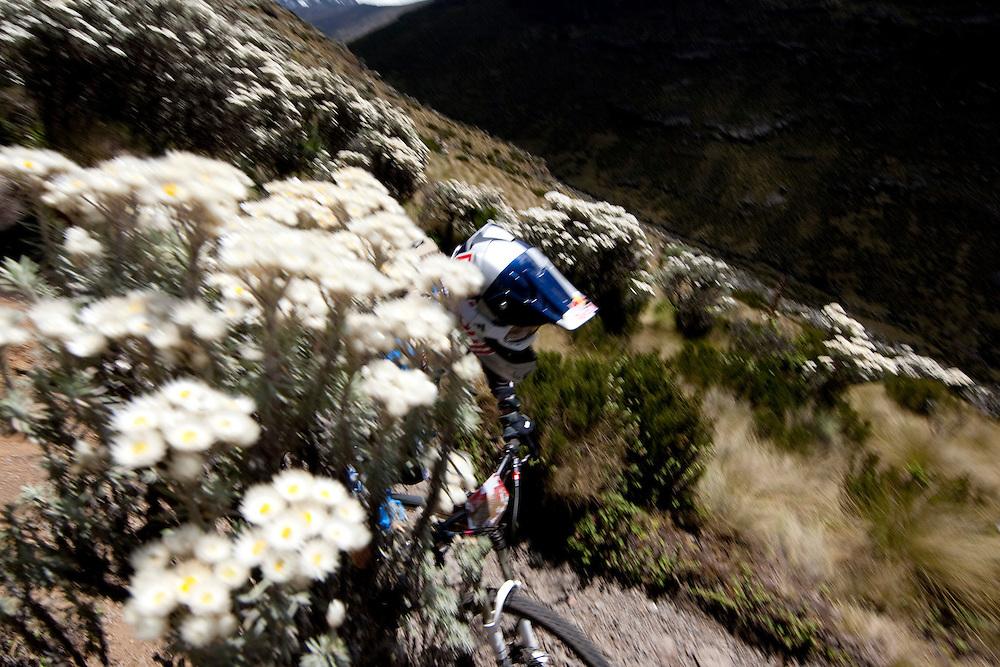 Location: Mont Kenya (Kenya) Urge Kenya 09/ The ultimate Mountain Bike gravity adventure at Mont-Kenya Athlete: Rene Wildhaber training on the race track between Old Moses camp (altitude 3300 meters) and Shipton Camps (altitude 4200 meters)