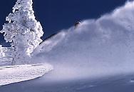 snow boader kicking up some powder