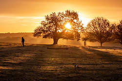 © Licensed to London News Pictures. 20/11/2020. London, UK. A walker in Richmond Park, South West London enjoys a frosty sunrise over the hills and trees as temperatures dropped bellow -1c last night for the South East of England. However, the weekend will become milder with some rain and light winds. Photo credit: Alex Lentati/LNP