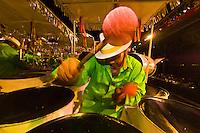 Man playing steel drums, Panorama Finals, Queens Park Savannah, Trinidad Carnival, Port of Spain, Trinidad & Tobago