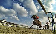 Lingfield Races 270313