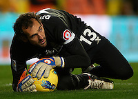 VILLARREAL, SPAIN - JANUARY 28:  Diego Lopez of Villarreal in action during the la Liga match between Villarreal and Barcelona at El Madrigal on January 28, 2012 in Villarreal, Spain.  (Photo by Manuel Queimadelos Alonso/Getty Images)