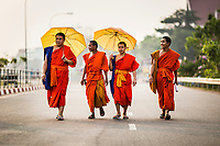 A group of monks walks along the streets of Vientiane, Laos.